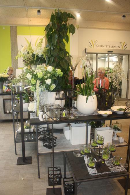 Ladenbau Blumen